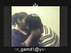جنس: شراميط, عربى