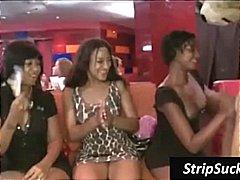 Porno: Në Ndeja, Striptizerka, Reale, Vajzat