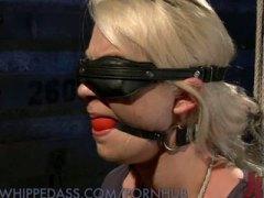 Porno: Domination, Lesbiennes, Fesser, Filles Sexy