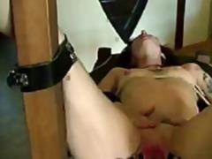 ポルノ: 大開口, サディズム & マゾヒズム, 指マンプレイ, フィストファック