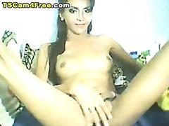 Porno: Sxoylamaq, Tay, Qızmış, Üstünə Qurtarmaq