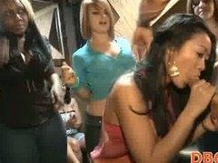 Porno: Vajzat, Në Grupë, Pijanecet, Striptizerka