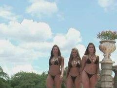 Porno: Grupinis Prievartavimas, Porno Žvaigždė, Sperma Ant Veido, Brazilės