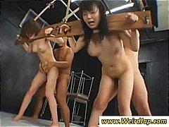 Porn: Ֆետիշ, Խումբ, Ստորացում, Սադո-Մազո