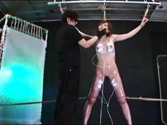 Porno: Sasiešana, Spalvainās, Rotaļlietas, Dominēšana