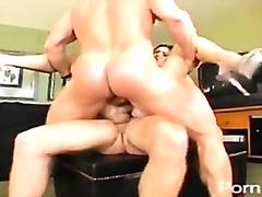 Porno: Penetraatio, Suihinotto, Kolmistaan, Pornotähti