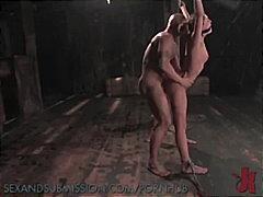 Porno: Boğaza Kimi, Böyük Döşlər, Hökmran, Çalanşik