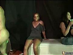 جنس: سكارى, حفلة, بنات جميلات, تستمنى زبه بيدها