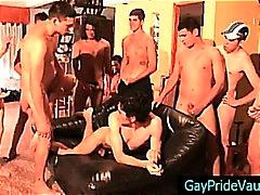 جنس: خولات, مجموعات, خول كبير مشعر, شرجى