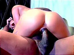 Porno: Brunetes, Pornozvaigznes, Orālais Sekss, Lieli Pupi