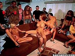 جنس: مجموعات, حفلة