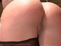 Pornići: Dominacija, Kinky, Grubo, Igračka