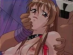 Porno: Skllavizëm, Hentai, Cica, Thithje