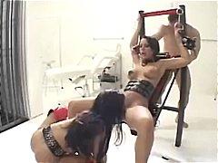 Porn: कामोत्तेजक, पोर्नस्टार, निर्दयी