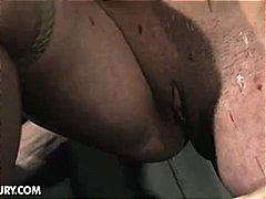 Porno: Thithje, Me Fytyrë, Tinejgjerkat, Anale