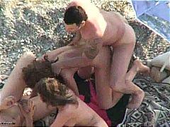 포르노: 브루넷, 구강섹스, 넷이서, 해변