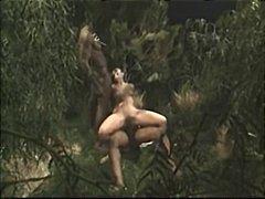 Porno: Boğaza Kimi, Sataşmaq, Sürmək, Anal