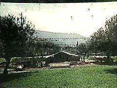 ελληνηκα gαμησια
