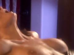 Pornići: Donje Rublje, Vožnja, Hardcore, Velike Sise