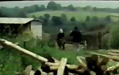 Porno: Məşhurlar, Məhsul