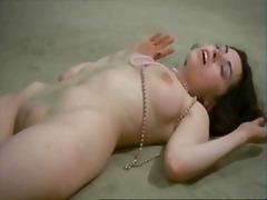 Porn: Մեղմ, Հանրաճանաչներ, Ծիտ