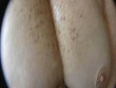 Porno: Gombullar, Üstünə Qurtarmaq, Böyük Döşlər