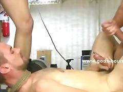 Porno: Fetiş, Şillələmək, Gey, Bağlı