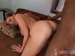 جنس: نهود كبيرة, وضعية الكلب, كساس حليقة