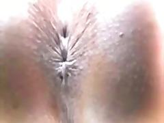 Porno: Të Trashat, Trashalluqet, Bytha, Në Kolltuk