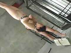 Porr: Bdsm, Aga, Japansk