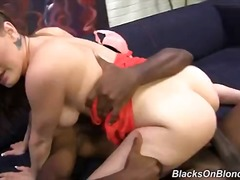 Porno: Pornohviezdy, Rozdielne Rasy, Veľké Vtáky, Tvrdé Porno