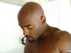 Porn: कठोर, मिल्फ़, बड़े स्तन, अंतर्जातीय