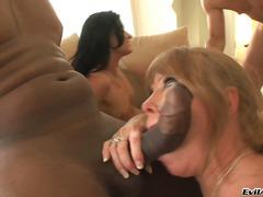 Porno: Ndër Racore, Thithje, Zezake, Dy Femra Një Mashkull