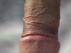 Porn: Penis Enorme, Transexuais, Broches, Rabos