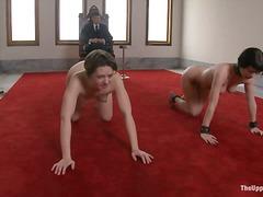 Porno: Hardkorë, Sado Dhe Maho Skllavizëm, Me Dhimbje, Poshtëruese