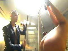 جنس: لعبة, نيك قوى, فتشية, نجوم الجنس