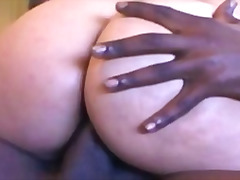Porno: Latina, Zeshkanet, Bytha, Ndër Racore