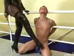 Porn: कामोत्तेजक, हिजड़ा, पारलैंगिक