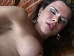 Porno: Velký Prsa, Punčochy, Felace, Shemale