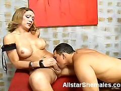Porno: Didžiakrūtės, Blondinės, Analinis, Oralinis Seksas