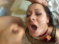 Porno: Corrida, Doble Penetración, Estrella Del Porno