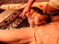 포르노: 성적쾌감, 내맘대로, 신체결박, 게이
