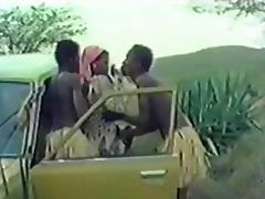 neil's safari