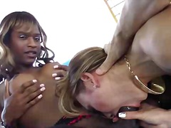 Amateur interracial shemale group fuck