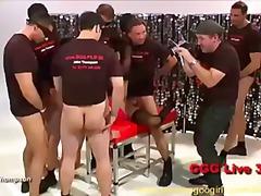 Porno: Me Fytyrë, Bjondinat, Në Grupë, Banda