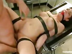 Porno: Gjokset, Hardkorë, Kari, Zeshkanet