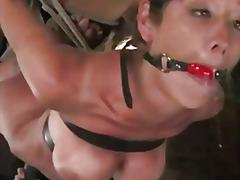 Porno: Coquins, Anal, Attachées, Éjaculation Féminine