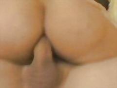 Porno: Cica, Zeshkanet, Pornoyje, Gjokset