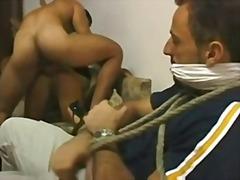 Porno: Cornudo, Brasileño, Fisgóna