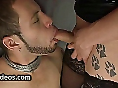 Porn: Transa